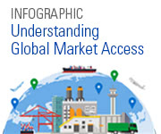 Understanding Global Market Access Infographic